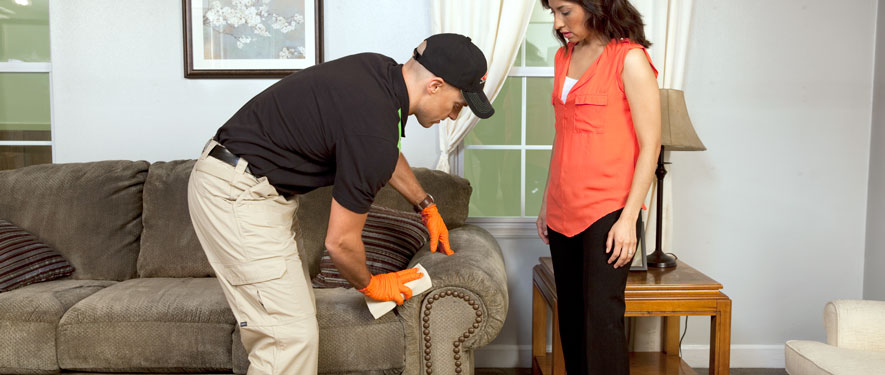 Clayton, NC carpet upholstery cleaning
